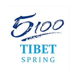 Logo Tibet Spring